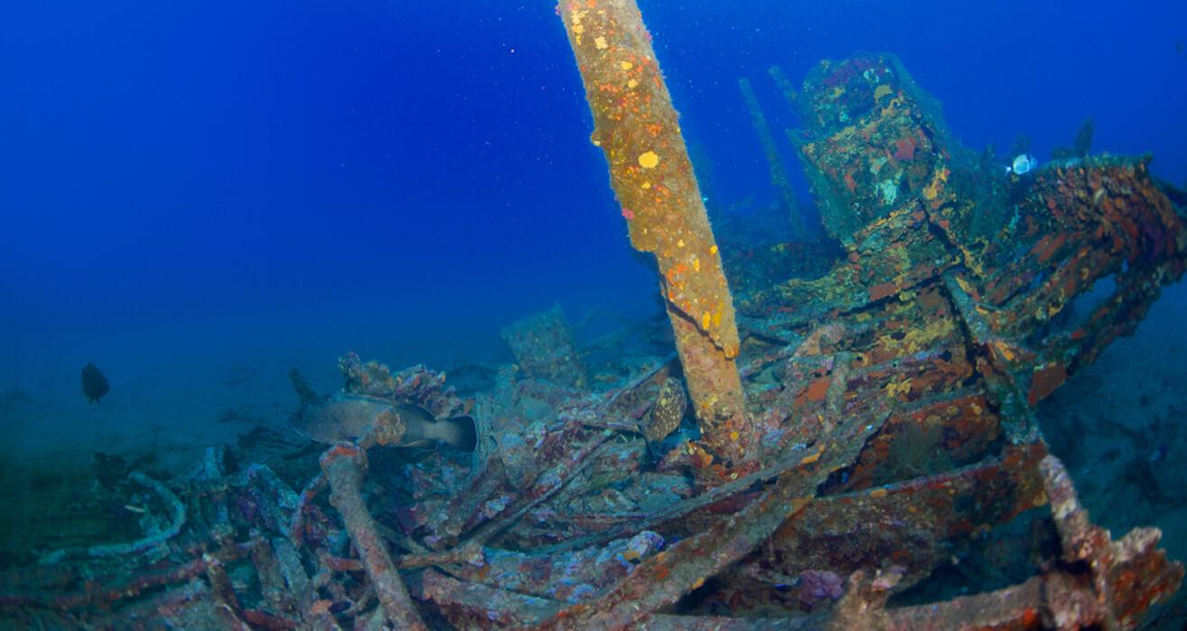 Autre vue d'une épave dans la méditérranée avec Mio Palmo Plongée