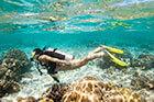 Un plongeuse explore la baie de cavalaire