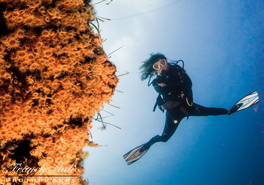 Alexandra prend la pose pour le plongeur photographe