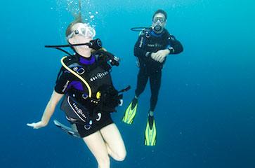 Un semaine de plaisir pour découvrir les fonds marins