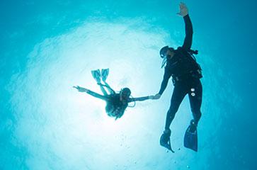 Un couple découvre les fonds sous-marin du Var