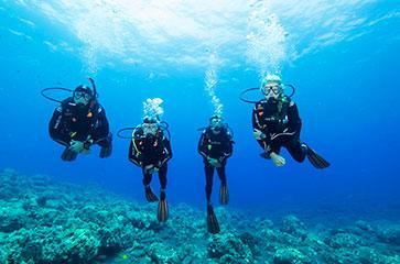 Découvrez le superbe parc national de Port-Cros pour la plongée
