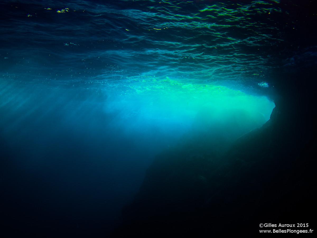 Plongée de la gabinière à Hyères Port Cros