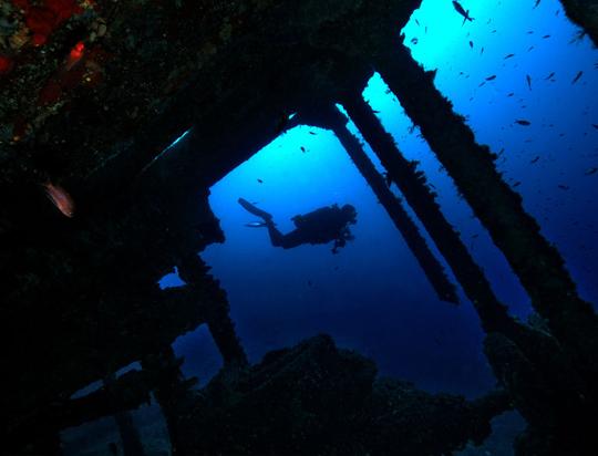 Le Saphis, site de plongée à Lavandou