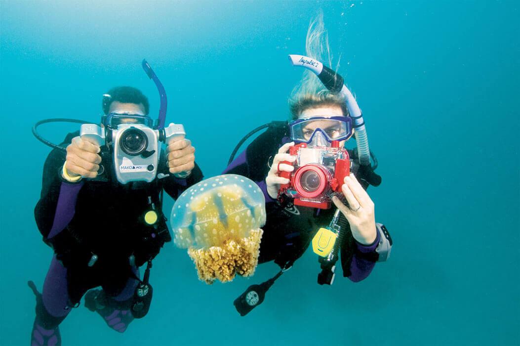 Le cours de spécialité Photo sous-marine en pratique sur les îles d'or à Hyères