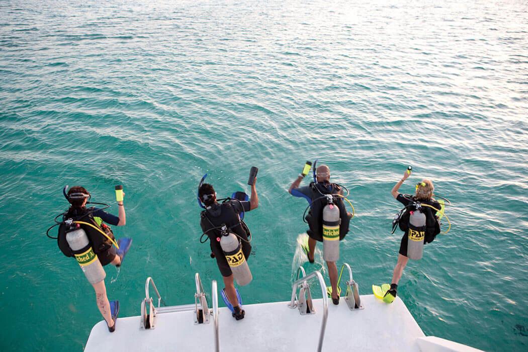 une session de formation se jette à l'eau dans la baie de Cavalaire